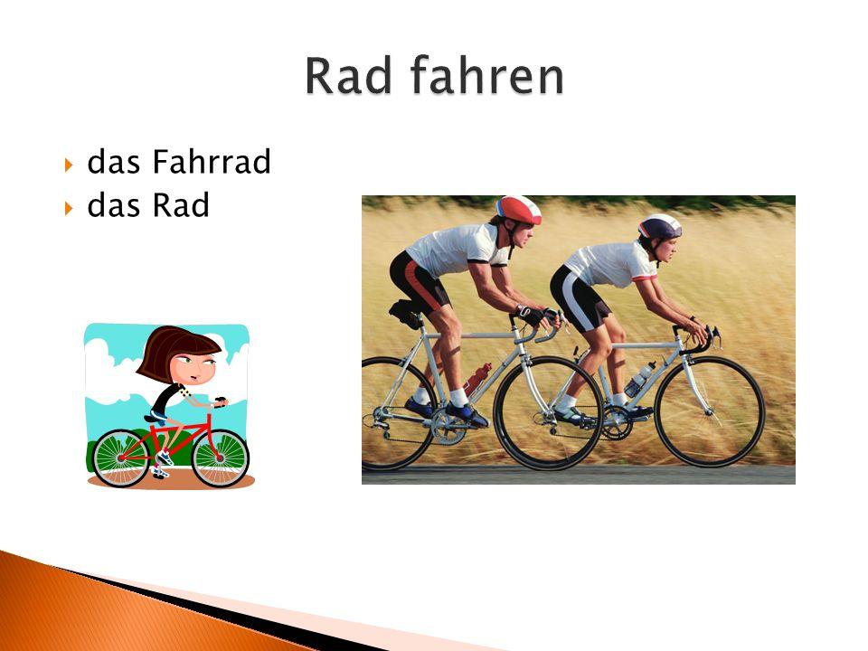 das Fahrrad  das Rad