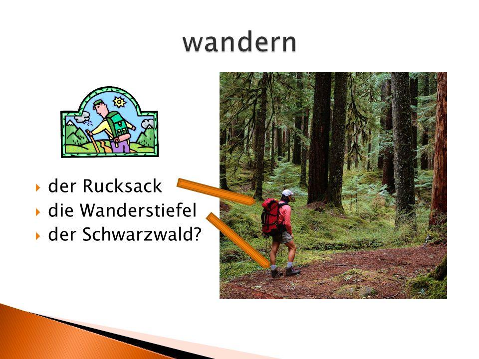  der Rucksack  die Wanderstiefel  der Schwarzwald?