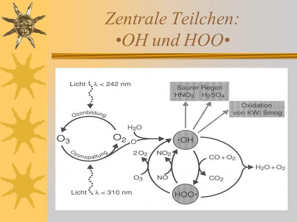 Zentrale Teilchen: OH und HOO