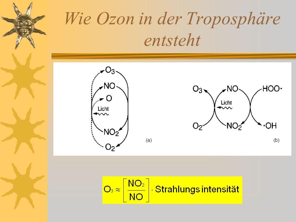 Die Ozonbildung durch CO CO 2 CO + O 2 OOH OH NO NO 2 O2O2 O3O3 Ozonbildung durch den NO/NO 2 -Zyklus Bereitstellung der Peroxid-Radikale