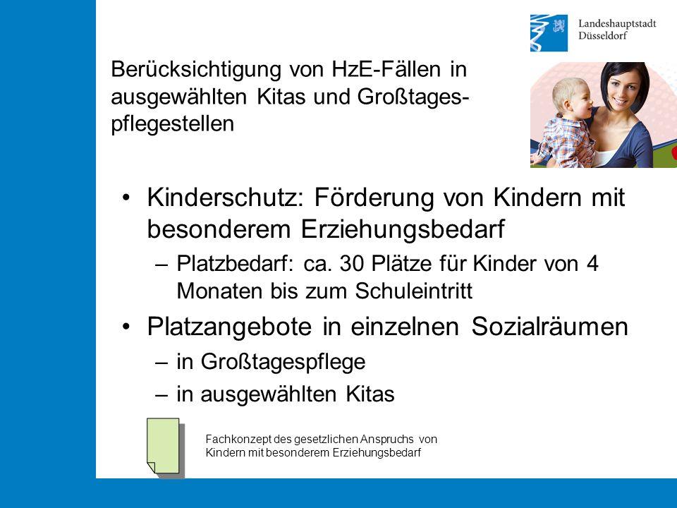 Berücksichtigung von HzE-Fällen in ausgewählten Kitas und Großtages- pflegestellen Kinderschutz: Förderung von Kindern mit besonderem Erziehungsbedarf –Platzbedarf: ca.