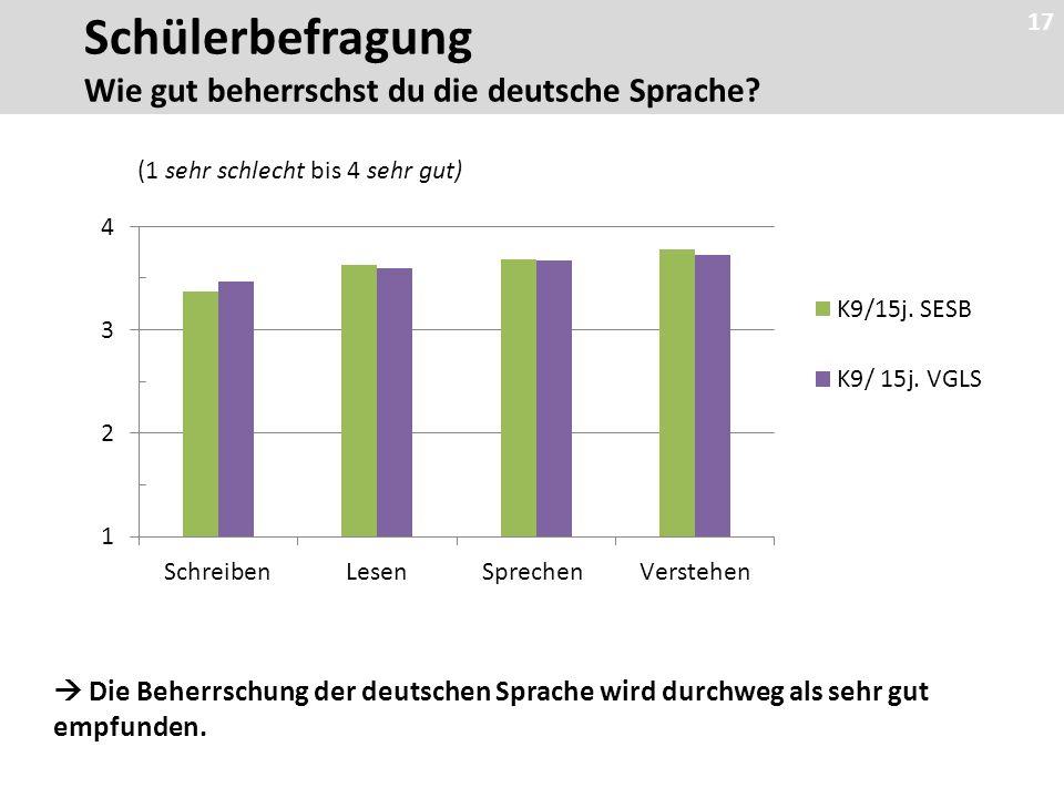 17 (1 sehr schlecht bis 4 sehr gut)  Die Beherrschung der deutschen Sprache wird durchweg als sehr gut empfunden.