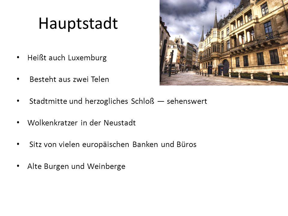 Hauptstadt Heißt auch Luxemburg Besteht aus zwei Telen Stadtmitte und herzogliches Schloß — sehenswert Wolkenkratzer in der Neustadt Sitz von vielen europäischen Banken und Büros Alte Burgen und Weinberge