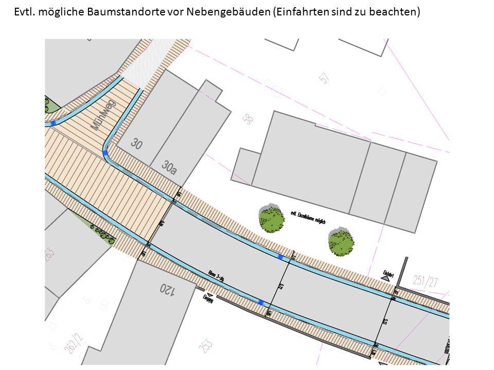 Evtl. mögliche Baumstandorte vor Nebengebäuden (Einfahrten sind zu beachten)
