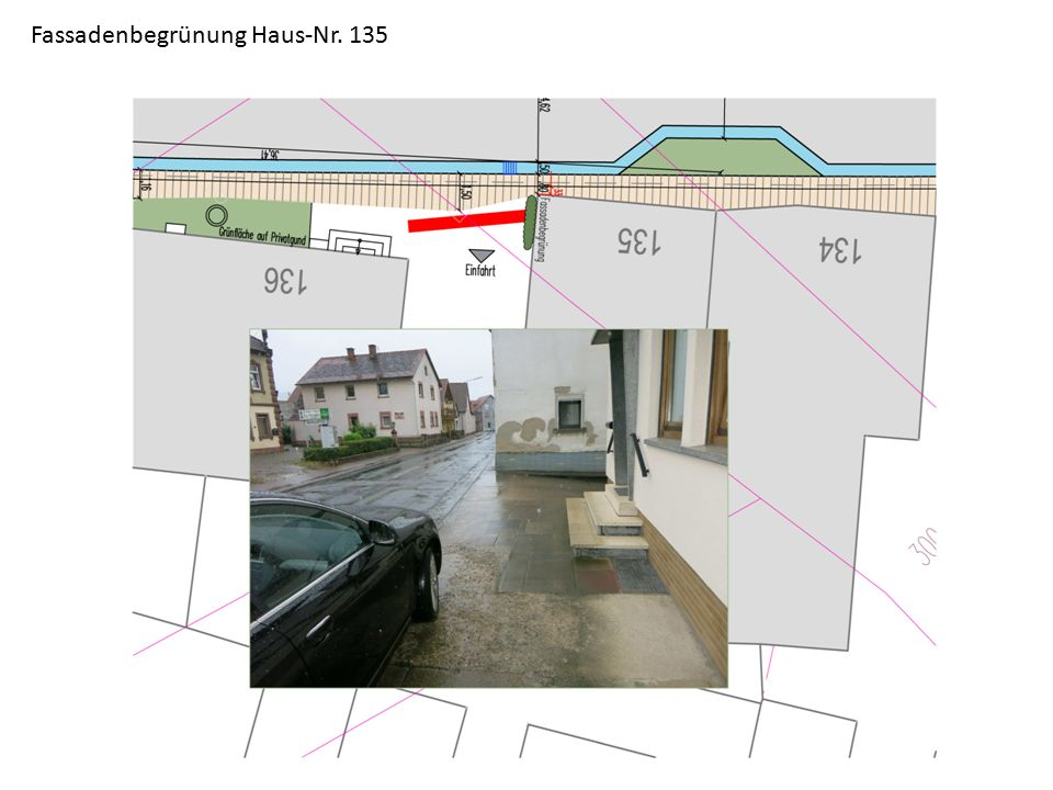 Fassadenbegrünung Haus-Nr. 135
