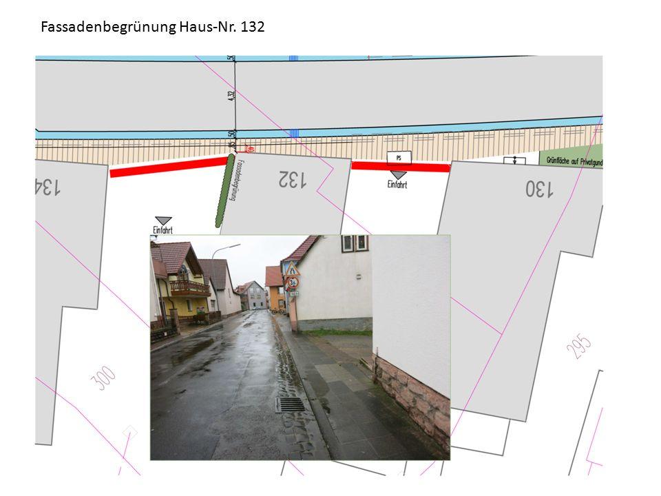 Fassadenbegrünung Haus-Nr. 132