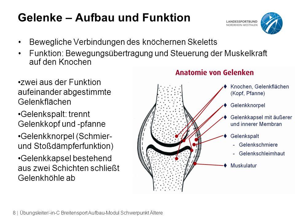 9 | Übungsleiter/-in-C Breitensport Aufbau-Modul Schwerpunkt Ältere Wirbelsäule Halswirbelsäule Brustwirbelsäule Lendenwirbelsäule Kreuzbein Steißbein Wirbellöcher