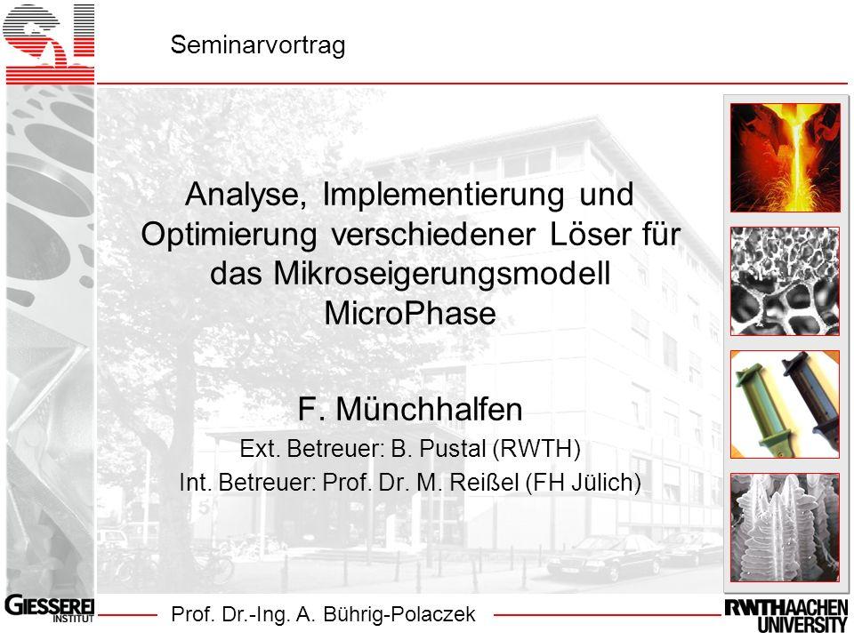 Prof. Dr.-Ing. A. Bührig-Polaczek Seminarvortrag Analyse, Implementierung und Optimierung verschiedener Löser für das Mikroseigerungsmodell MicroPhase