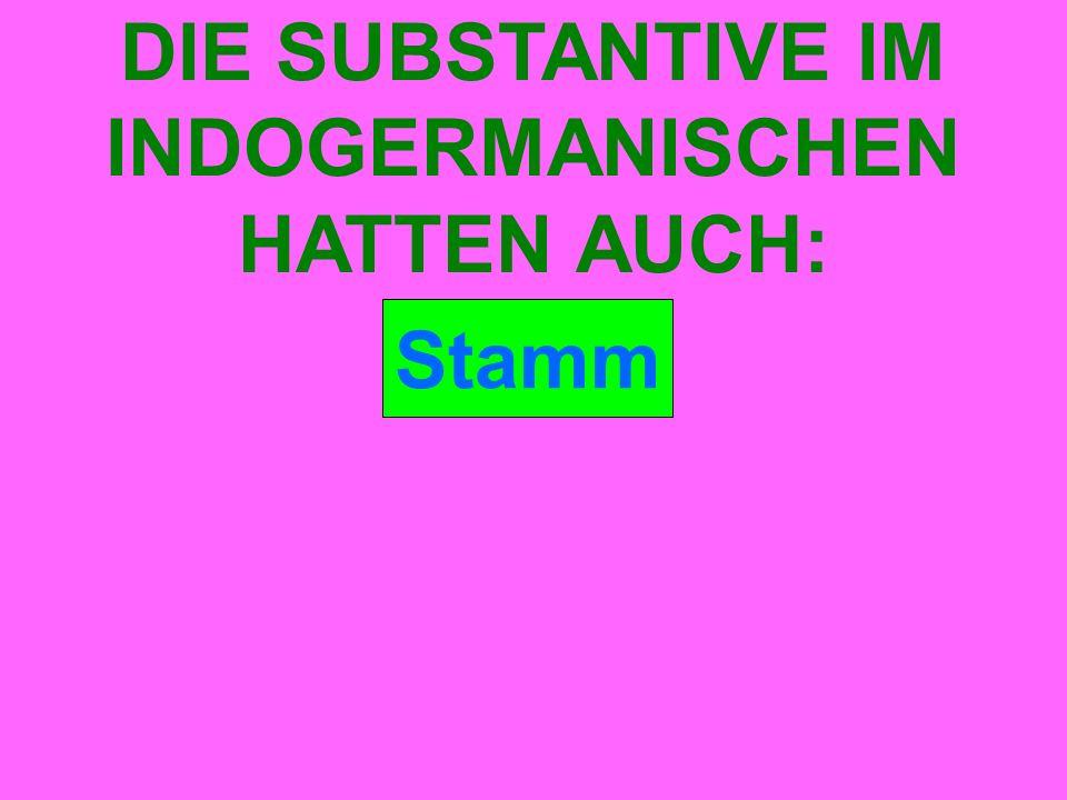 Stamm DIE SUBSTANTIVE IM INDOGERMANISCHEN HATTEN AUCH:
