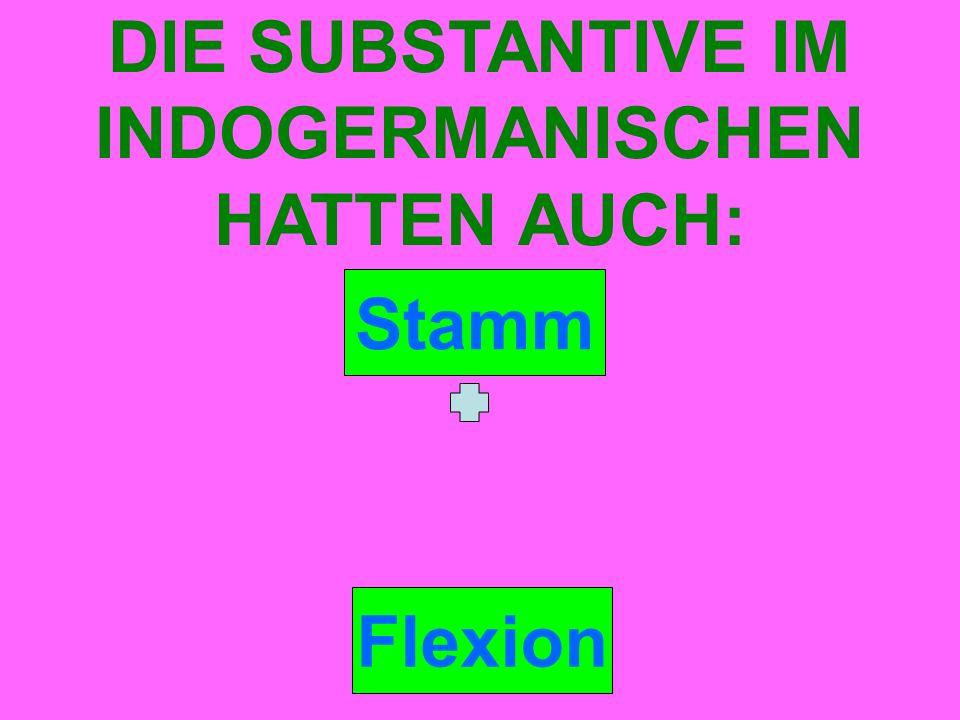 Stamm DIE SUBSTANTIVE IM INDOGERMANISCHEN HATTEN AUCH: Flexion