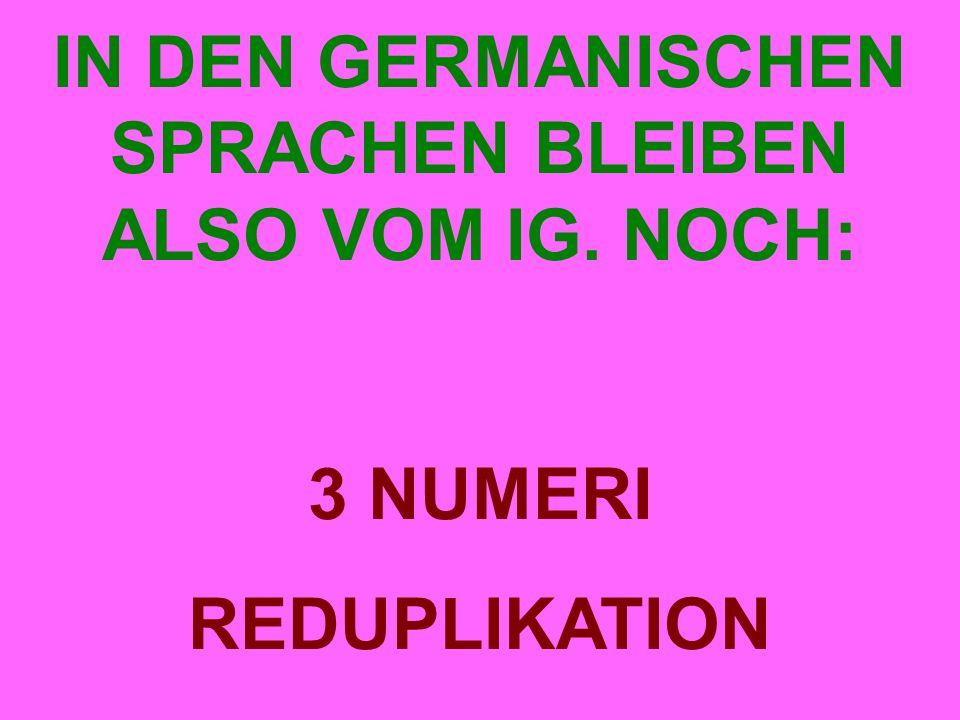 IN DEN GERMANISCHEN SPRACHEN BLEIBEN ALSO VOM IG. NOCH: 3 NUMERI REDUPLIKATION