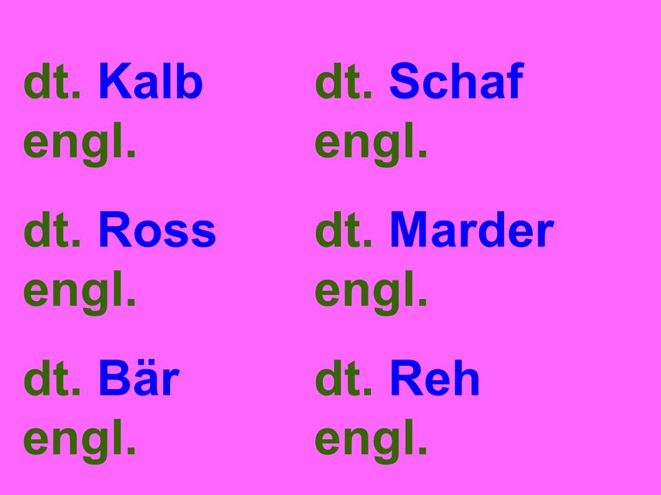 dt. Kalb engl. dt. Ross engl. dt. Bär engl. dt. Schaf engl. dt. Marder engl. dt. Reh engl.