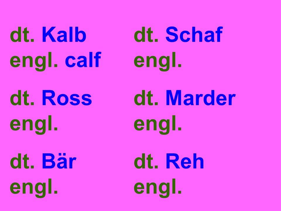 dt. Kalb engl. calf dt. Ross engl. dt. Bär engl. dt. Schaf engl. dt. Marder engl. dt. Reh engl.