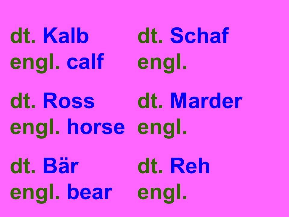 dt. Kalb engl. calf dt. Ross engl. horse dt. Bär engl.