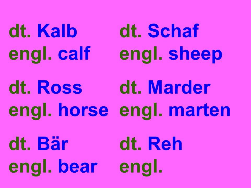 dt. Kalb engl. calf dt. Ross engl. horse dt. Bär engl. bear dt. Schaf engl. sheep dt. Marder engl. marten dt. Reh engl.
