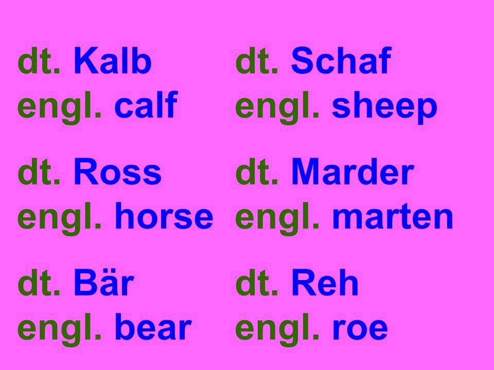dt. Kalb engl. calf dt. Ross engl. horse dt. Bär engl. bear dt. Schaf engl. sheep dt. Marder engl. marten dt. Reh engl. roe