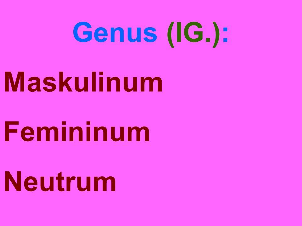 Genus (IG.): Maskulinum Femininum Neutrum