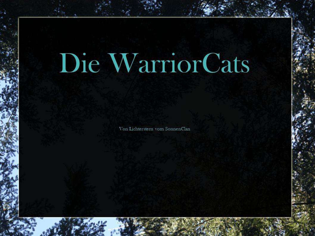 Die wildesten Katzen, die es jemals gegeben hat!