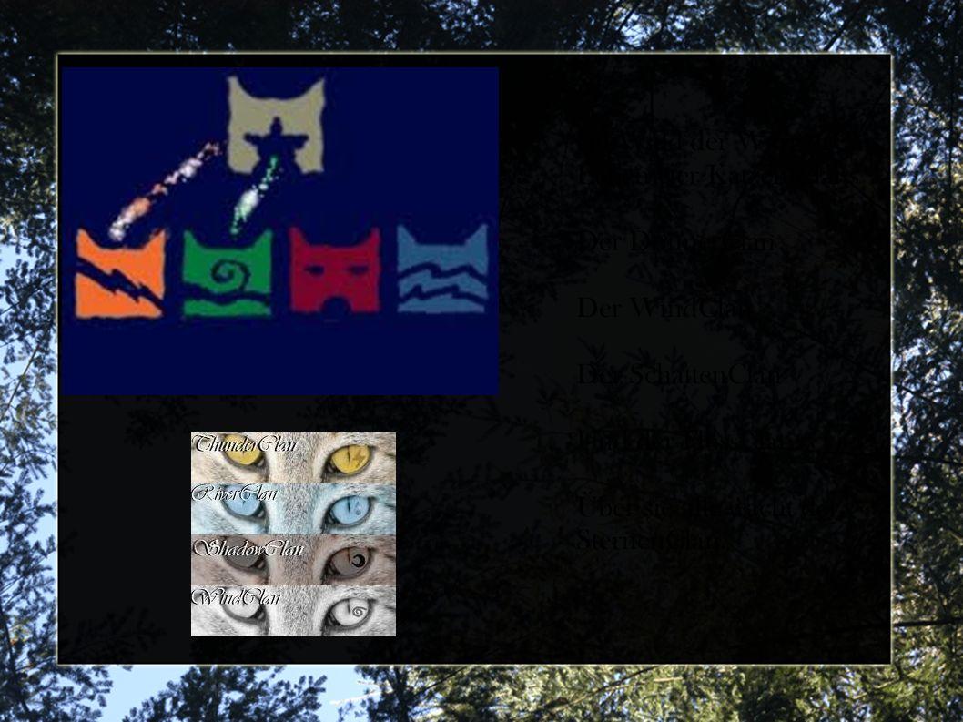 Im Wald der WarriorCats Leben vier Katzen Clans Der DonnerClan Der WindClan Der SchattenClan Und der FlussClan.