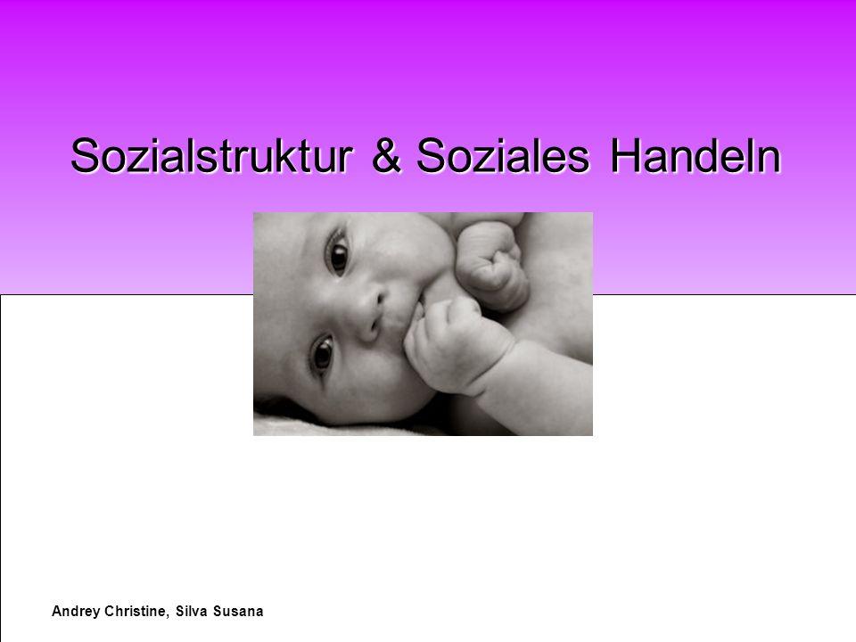Andrey Christine, Silva Susana Sozialstruktur & Soziales Handeln