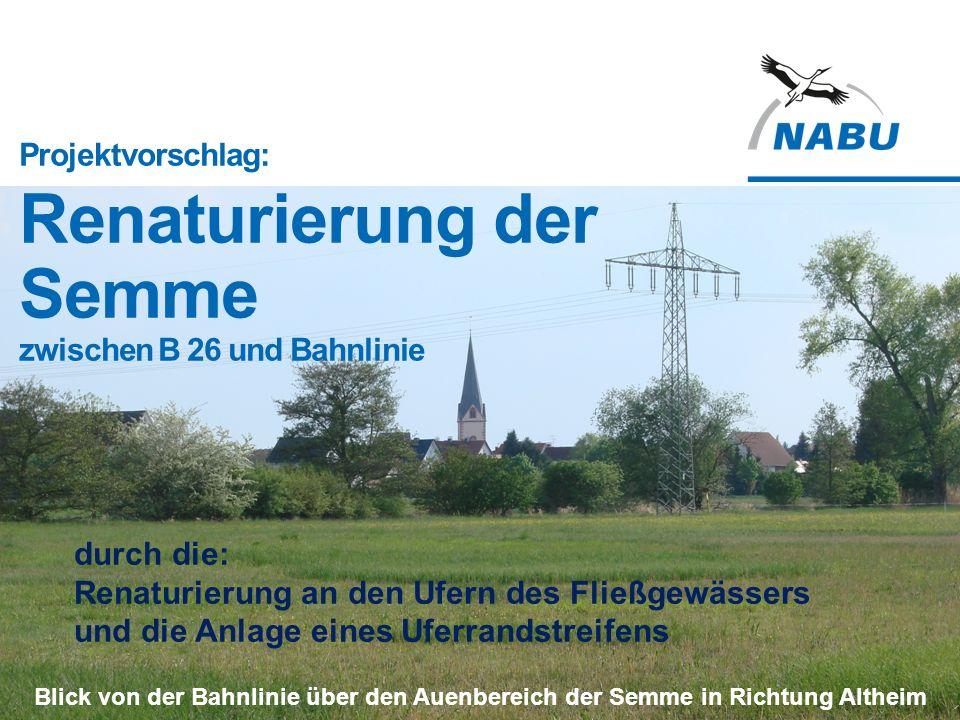 Projektvorschlag: Renaturierung der Semme zwischen B 26 und Bahnlinie Blick von der Bahnlinie über den Auenbereich der Semme in Richtung Altheim durch