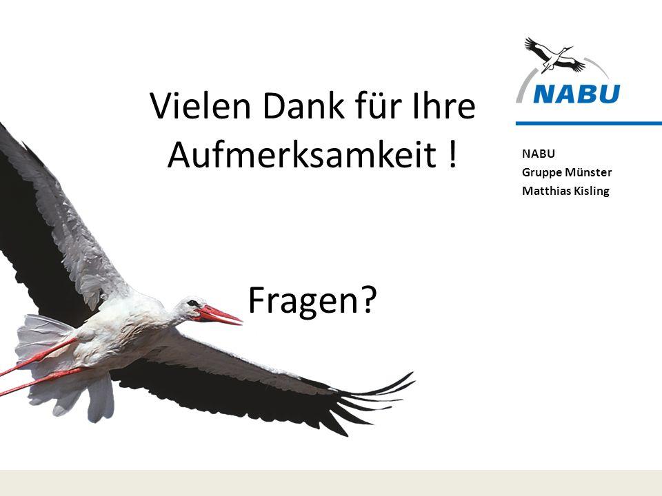 NABU Gruppe Münster Matthias Kisling Vielen Dank für Ihre Aufmerksamkeit ! Fragen?