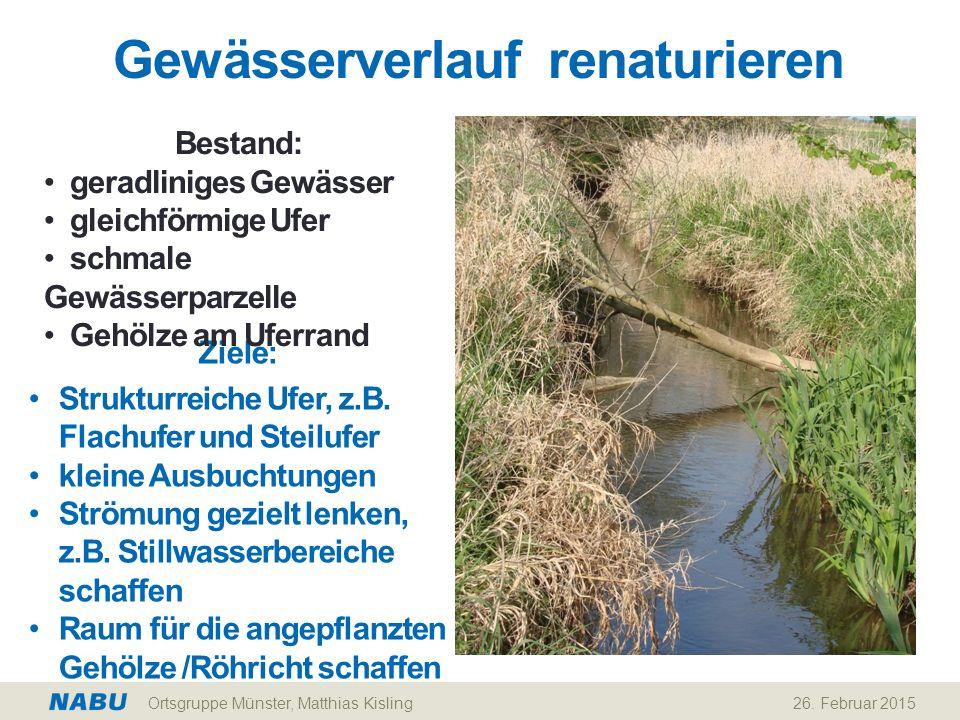 Gewässerverlauf renaturieren 26. Februar 2015 Ziele: Strukturreiche Ufer, z.B. Flachufer und Steilufer kleine Ausbuchtungen Strömung gezielt lenken, z
