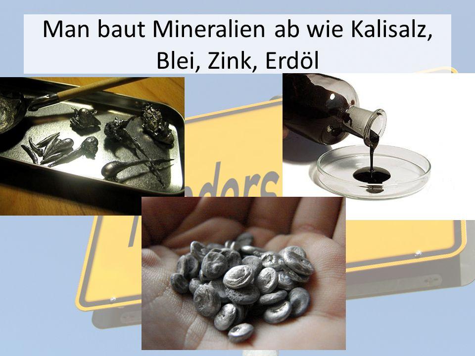 Man baut Mineralien ab wie Kalisalz, Blei, Zink, Erdöl
