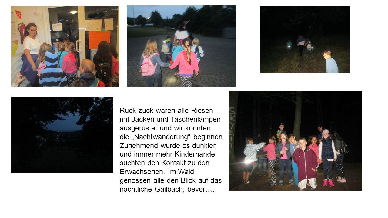 """Ruck-zuck waren alle Riesen mit Jacken und Taschenlampen ausgerüstet und wir konnten die """"Nachtwanderung beginnen."""