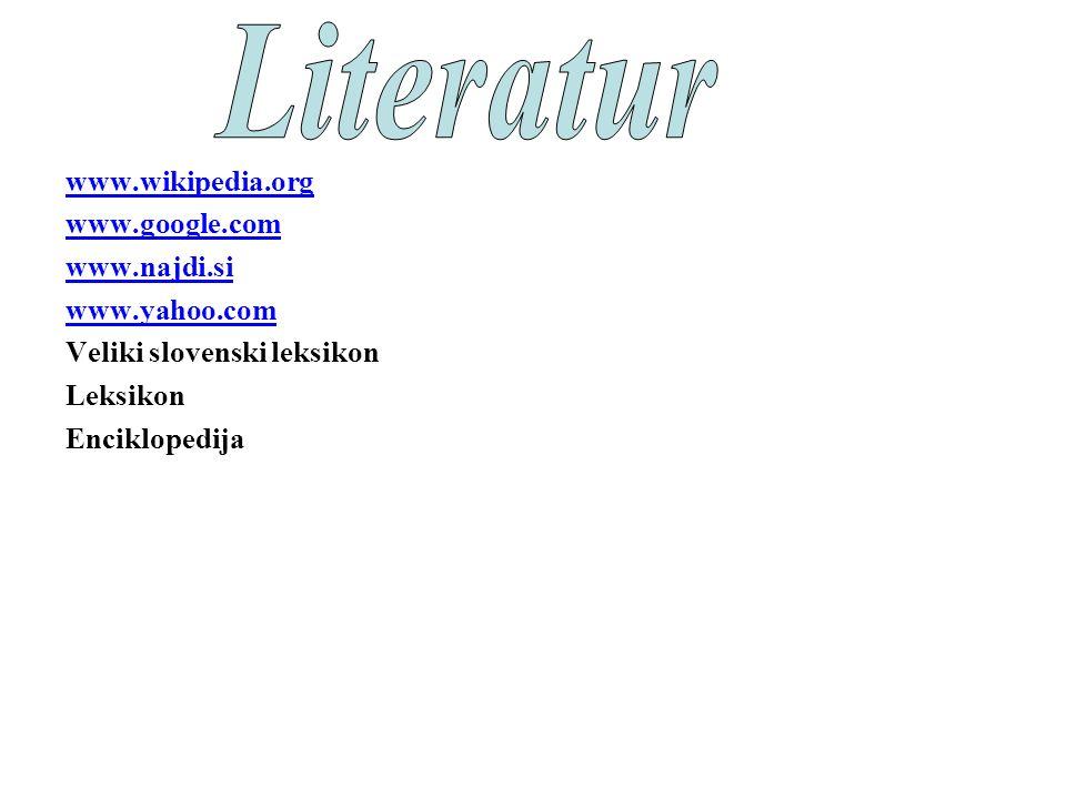 www.wikipedia.org www.google.com www.najdi.si www.yahoo.com Veliki slovenski leksikon Leksikon Enciklopedija