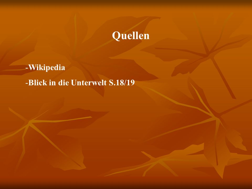 Quellen -Wikipedia -Blick in die Unterwelt S.18/19