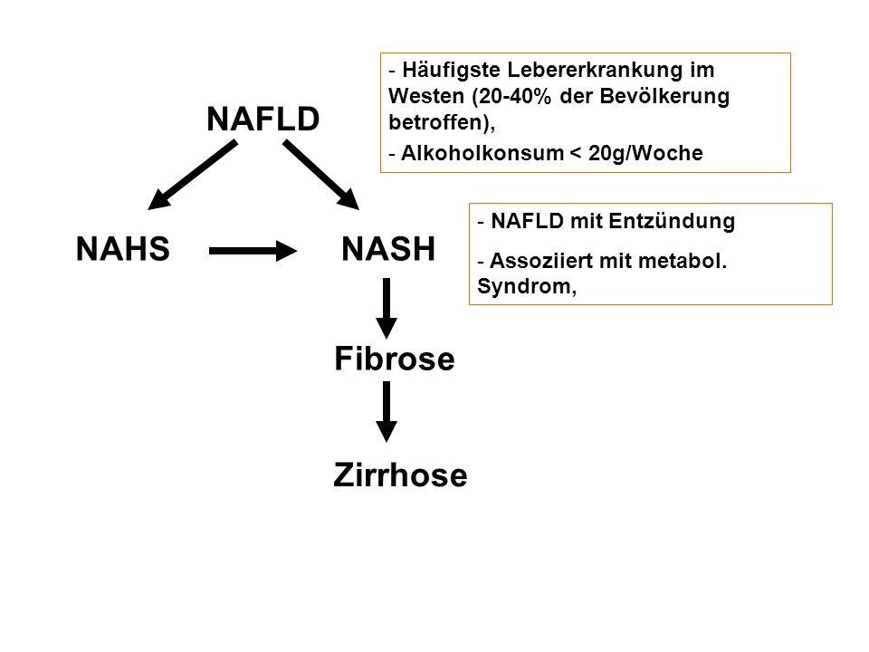 NAFLD NAHSNASH Fibrose Zirrhose - Häufigste Lebererkrankung im Westen (20-40% der Bevölkerung betroffen), - Alkoholkonsum < 20g/Woche - NAFLD mit Entz