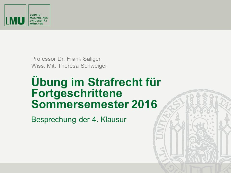 Professor Dr. Frank Saliger Wiss. Mit.