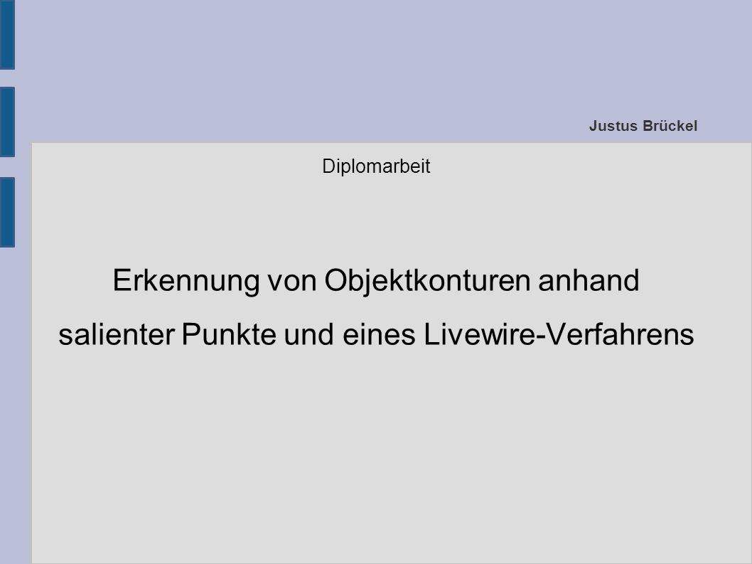 Justus Brückel Diplomarbeit Erkennung von Objektkonturen anhand salienter Punkte und eines Livewire-Verfahrens