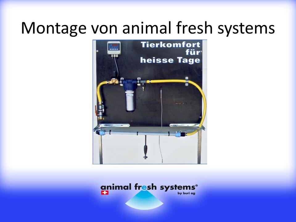 Montage von animal fresh systems