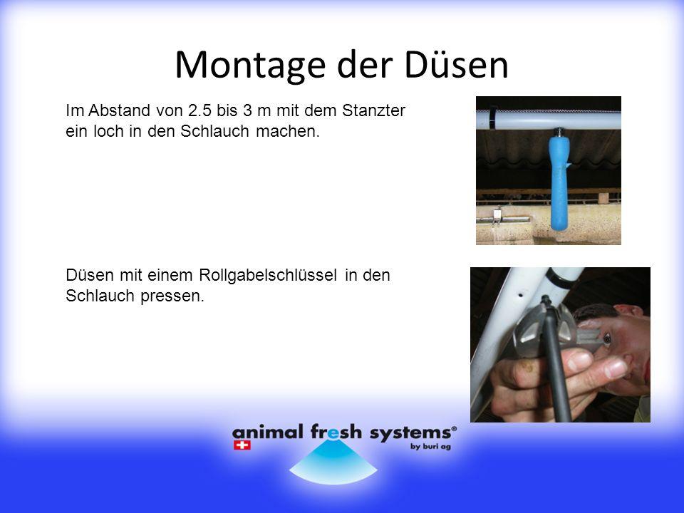 Montage der Düsen Im Abstand von 2.5 bis 3 m mit dem Stanzter ein loch in den Schlauch machen.