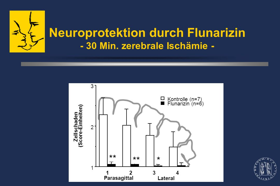 Neuroprotektion durch Flunarizin - 30 Min.