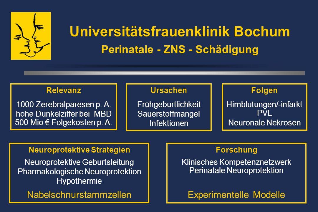 Universitätsfrauenklinik Bochum Perinatale - ZNS - Schädigung Ursachen Frühgeburtlichkeit Sauerstoffmangel Infektionen Folgen Hirnblutungen/-infarkt PVL Neuronale Nekrosen Neuroprotektive Strategien Neuroprotektive Geburtsleitung Pharmakologische Neuroprotektion Hypothermie Nabelschnurstammzellen Relevanz 1000 Zerebralparesen p.