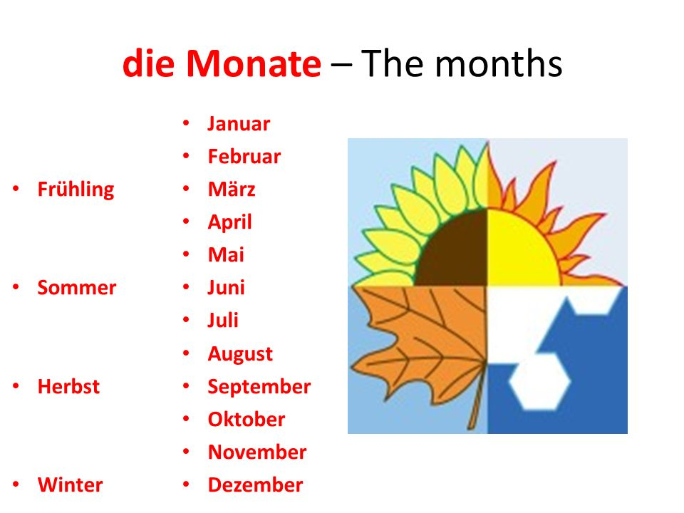 die Monate – The months Januar Februar März April Mai Juni Juli August September Oktober November Dezember Frühling Sommer Herbst Winter