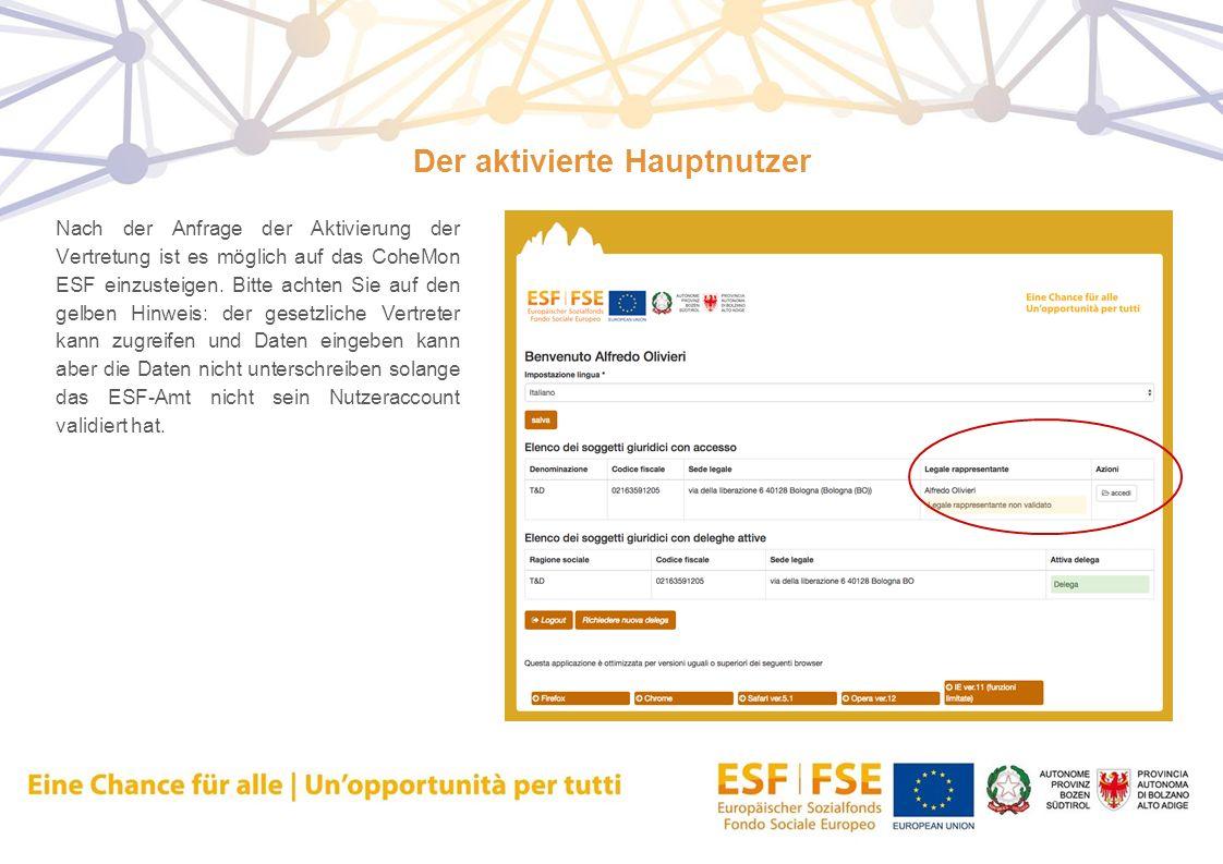 Der aktivierte Hauptnutzer Nach der Anfrage der Aktivierung der Vertretung ist es möglich auf das CoheMon ESF einzusteigen. Bitte achten Sie auf den g