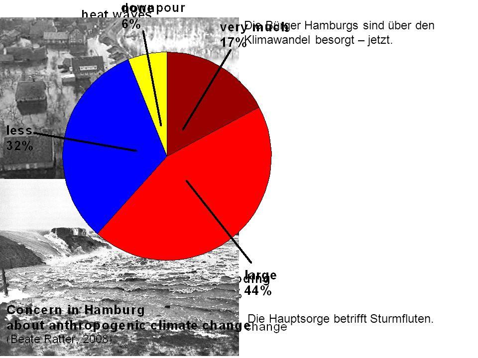 Die Bürger Hamburgs sind über den Klimawandel besorgt – jetzt. Die Hauptsorge betrifft Sturmfluten.