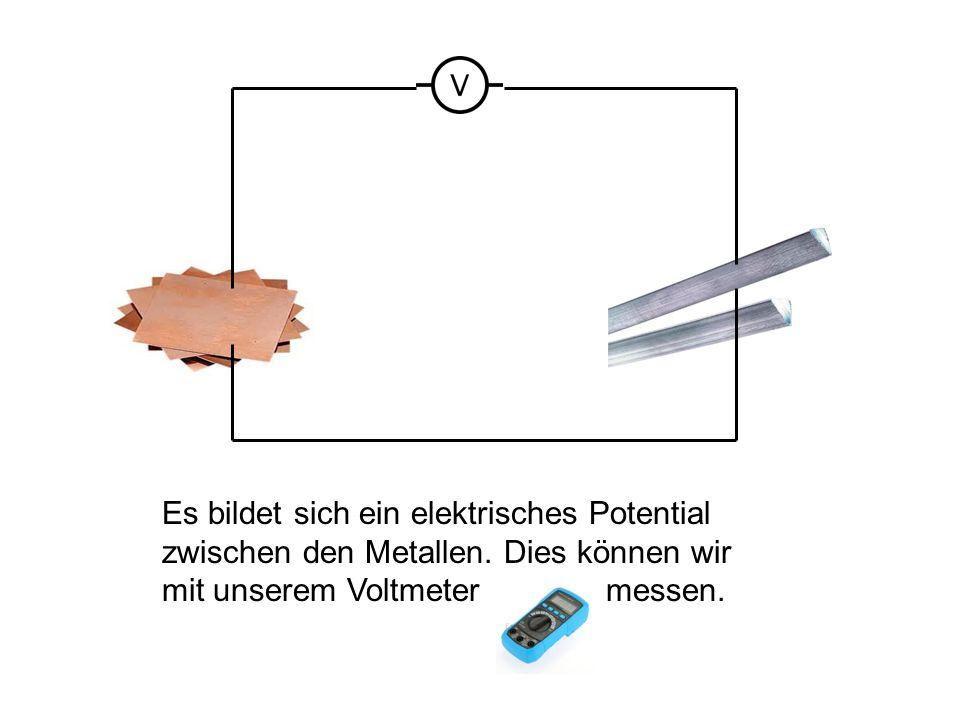 Es bildet sich ein elektrisches Potential zwischen den Metallen. Dies können wir mit unserem Voltmeter messen.