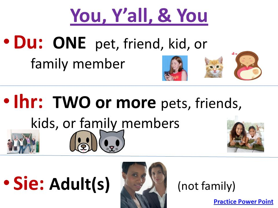 You, Y'all, & You Du: ONE pet, friend, kid, or family member Ihr: TWO or more pets, friends, kids, or family members Sie: Adult(s) (not family) Practice Power Point
