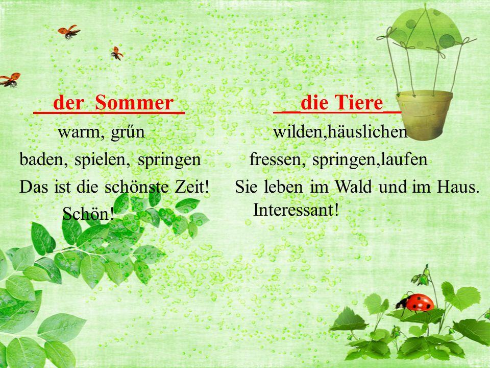 _ der Sommer_ warm, grűn baden, spielen, springen Das ist die schönste Zeit.