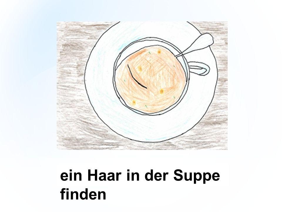 ein Haar in der Suppe finden