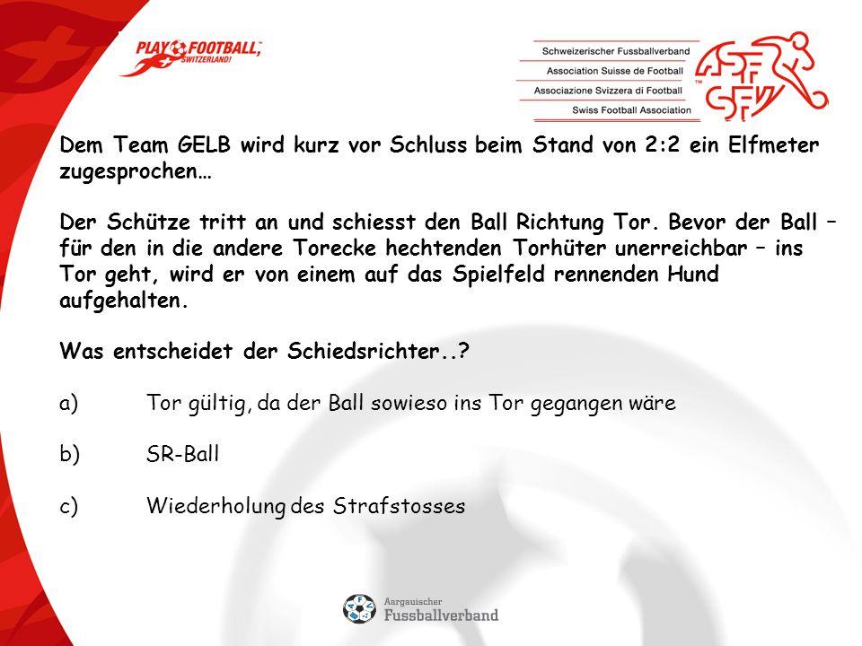Dem Team GELB wird kurz vor Schluss beim Stand von 2:2 ein Elfmeter zugesprochen… Der Schütze tritt an und schiesst den Ball Richtung Tor.