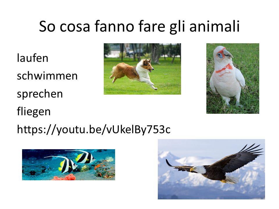 So cosa fanno fare gli animali laufen schwimmen sprechen fliegen https://youtu.be/vUkelBy753c