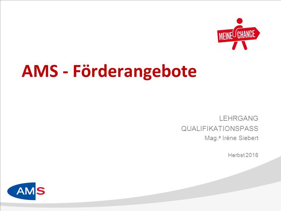 AMS - Förderangebote LEHRGANG QUALIFIKATIONSPASS Mag. a Irène Siebert Herbst 2016