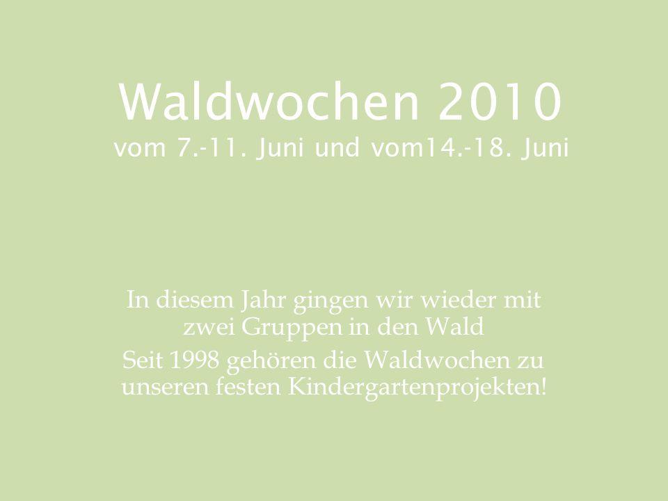 Waldwochen 2010 vom 7.-11. Juni und vom14.-18.