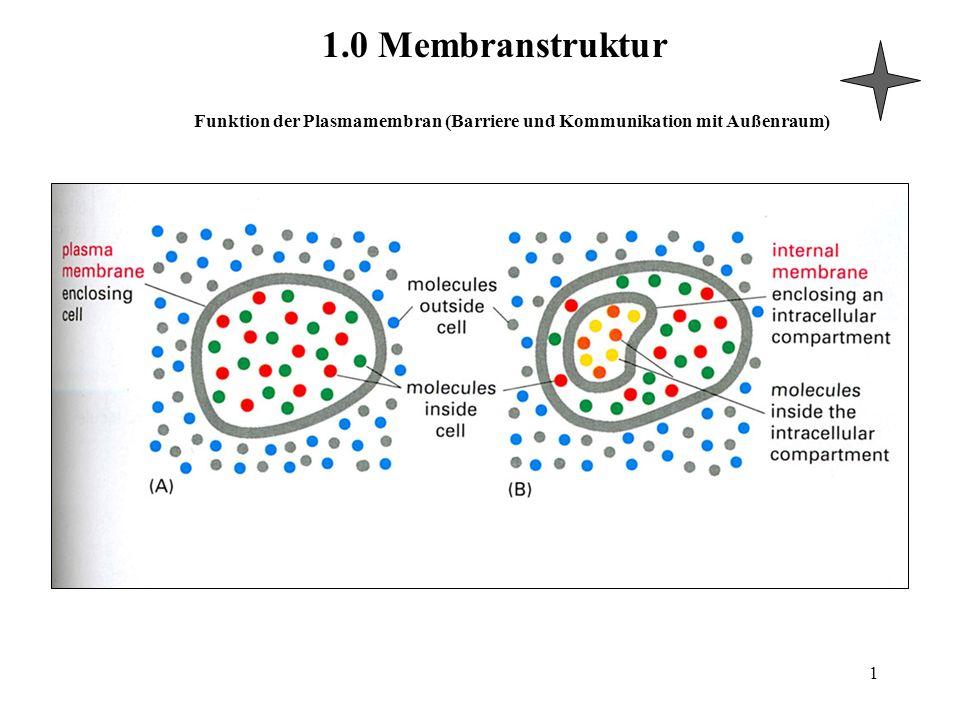 Funktion der Plasmamembran (Barriere und Kommunikation mit Außenraum) 1.0 Membranstruktur 1